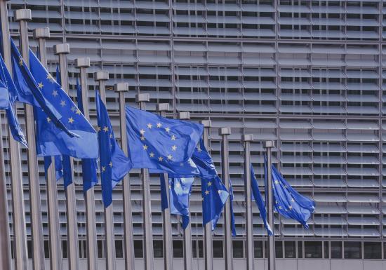 EU-Flaggen © Bild von Pexels auf Pixabay
